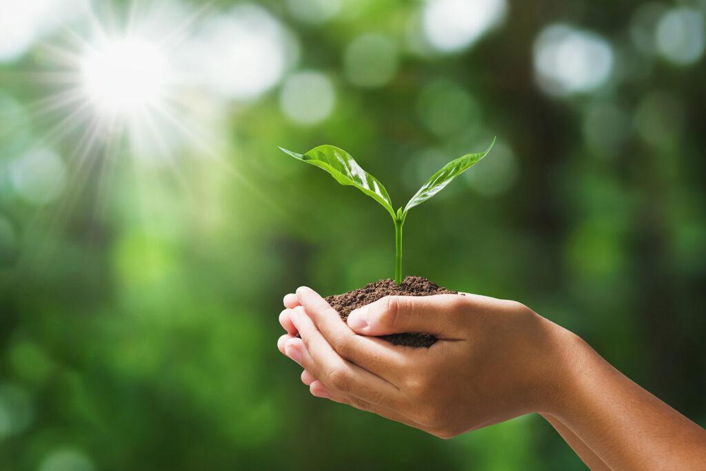 ProChile impulsa estrategias de sostenibilidad para combatir el cambio climático y la escasez hídrica