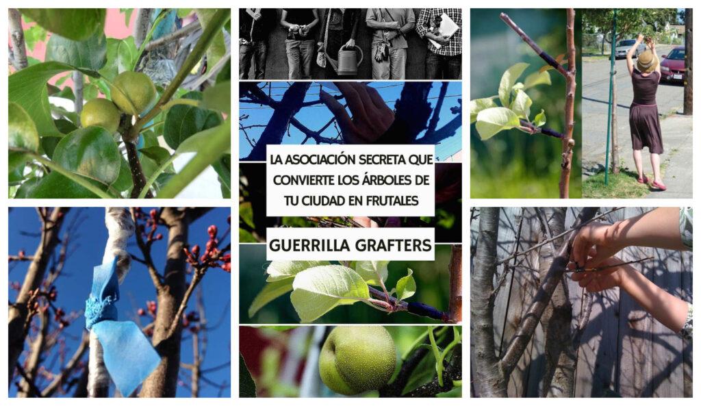 Guerrilla Grafters, la asociación secreta que convierte los árboles de tu ciudad en frutales