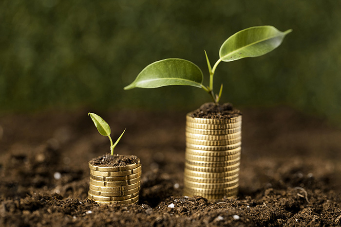 La tierra, un refugio para las inversiones