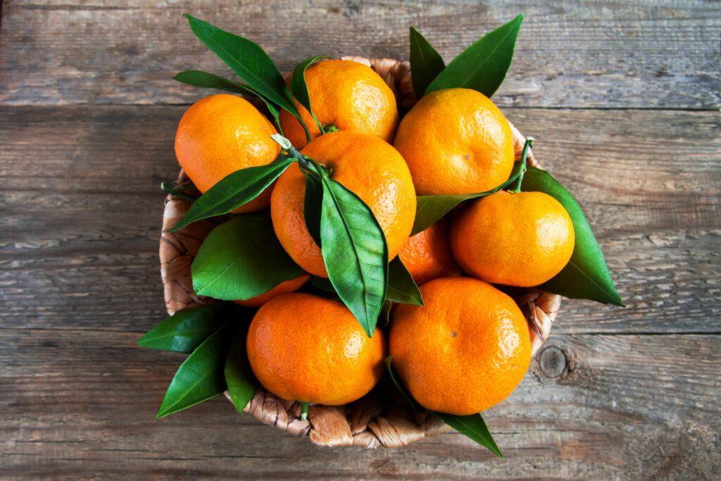 Agronometrics en Gráficos: Las mandarinas endulzan las exportaciones de cítricos chilenos