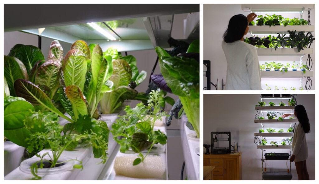 El sistema vertical hidropónico que podrás hacer tu mismo para cultivar