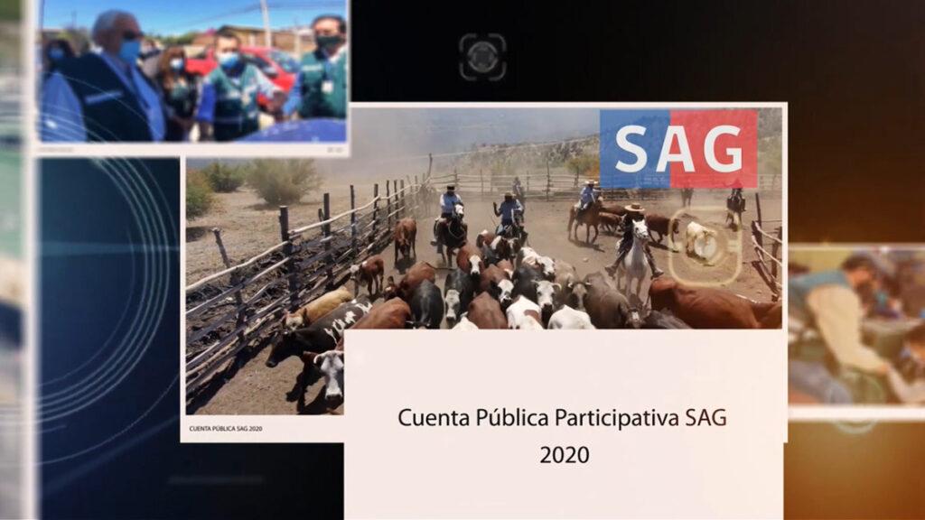 Cuenta pública 2020: SAG implementa certificación electrónica fitosanitaria sin papel