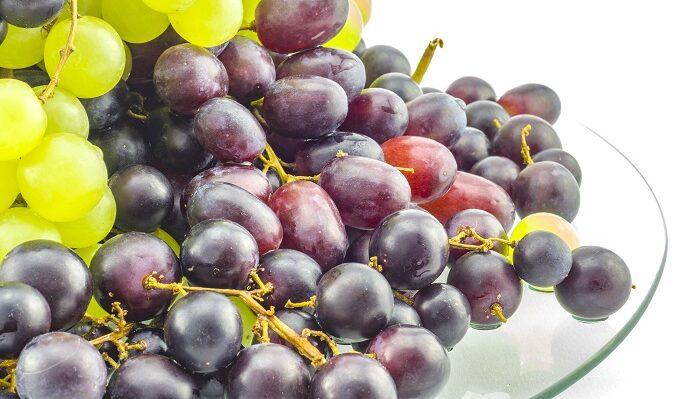 Chile: Exportaciones de fruta fresca a Asia crecen 19% en campaña 2020/21
