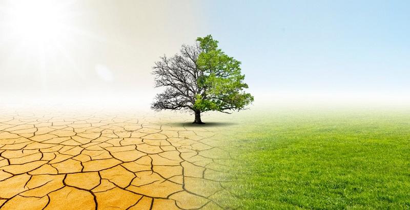 Anuncian webinar para analizar el futuro del agua y la agricultura en Chile