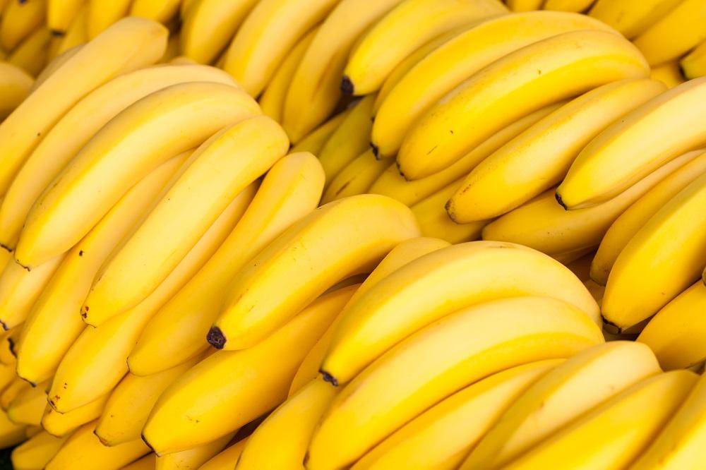 Exportaciones de bananos colombianos alcanzan 486.816 toneladas durante 2021