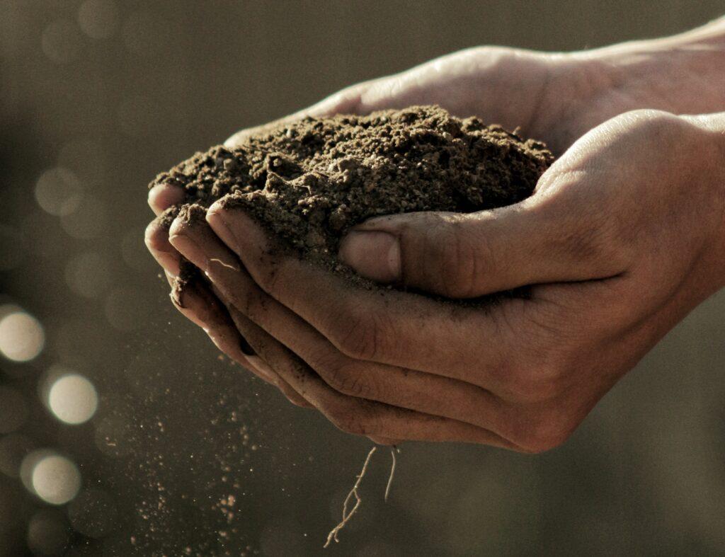 Manual de prácticas agrícolas para una agricultura sustentable