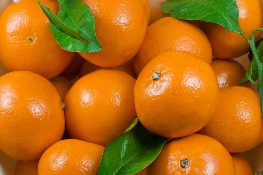 Instituciones de Argentina presentan dos nuevas variedades de mandarinas