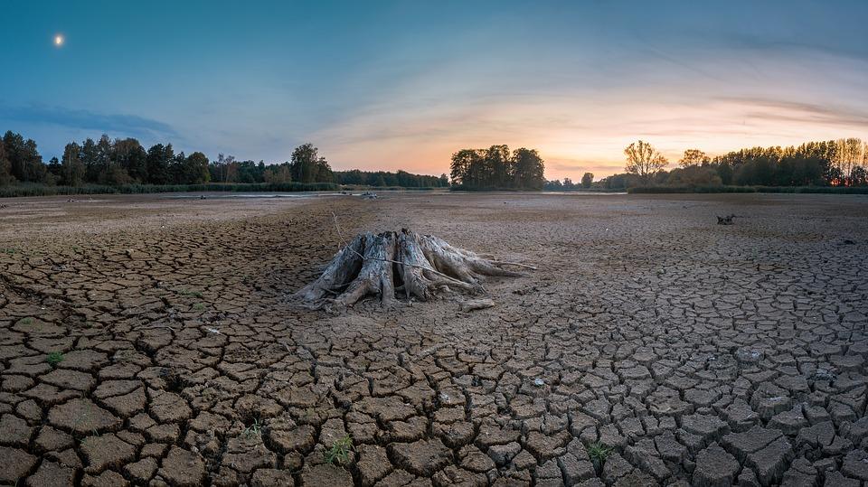 Columna de Opinión: Los desafíos del sector agrícola para paliar la sequía en Chile