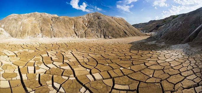 Ficha técnica: Calidad, fertilidad y tipos de degradación del suelo