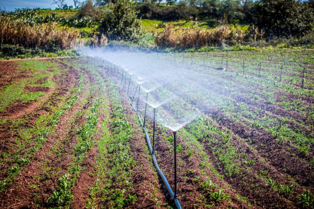 Ministerio de Agricultura de México llama al uso eficiente del agua en el campo