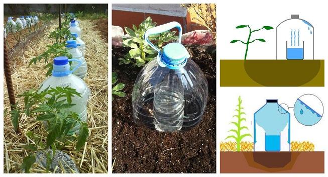 Sistema de riego por goteo solar con botellas de plástico