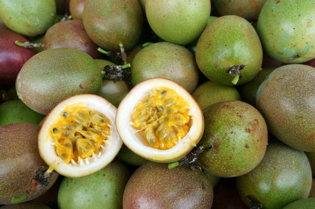 Exportaciones colombianas de frutas exóticas a Europa crecen en primer trimestre de 2021