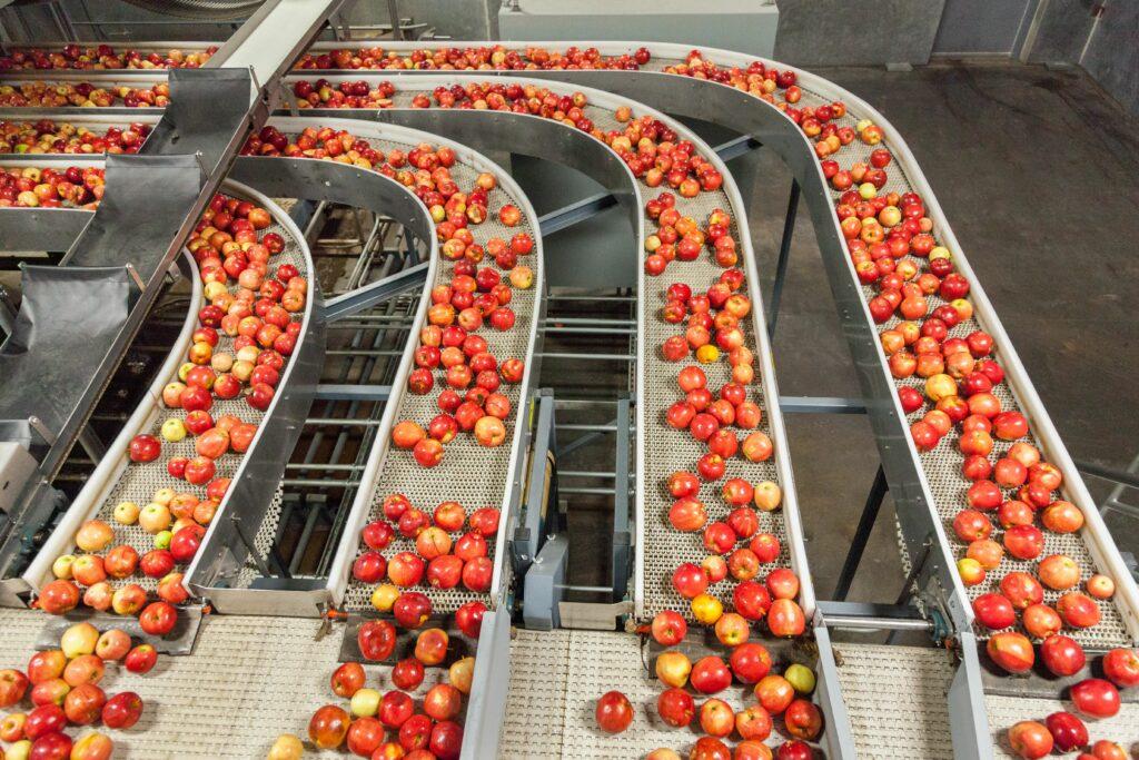 FAO- OCDE: Los sistemas agroalimentarios mundiales deben transformarse para alcanzar los ODS para 2030