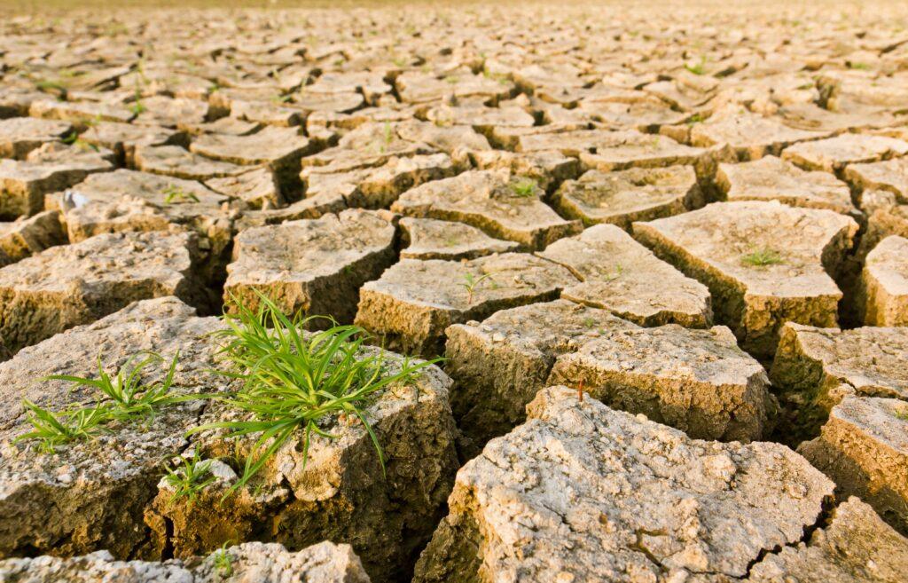 México, EE. UU. y Canadá intercambian información para enfrentar impactos del cambio climático en la agricultura