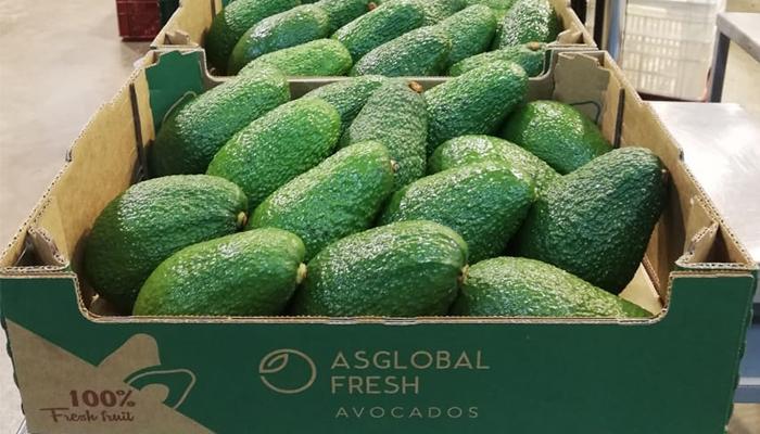 ASGLOBALFRESH, frutas frescas de calidad durante todo el año que rompen con la estacionalidad
