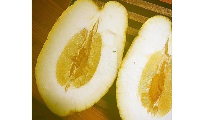 limón ponderosa