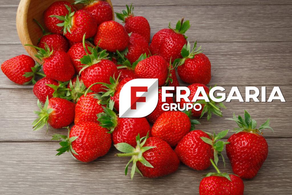 FRAGARIA, la innovadora plataforma especialista en el cultivo y la industria de la frutilla en Iberoamérica