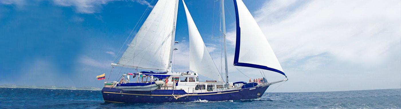 Beagle Sailboat