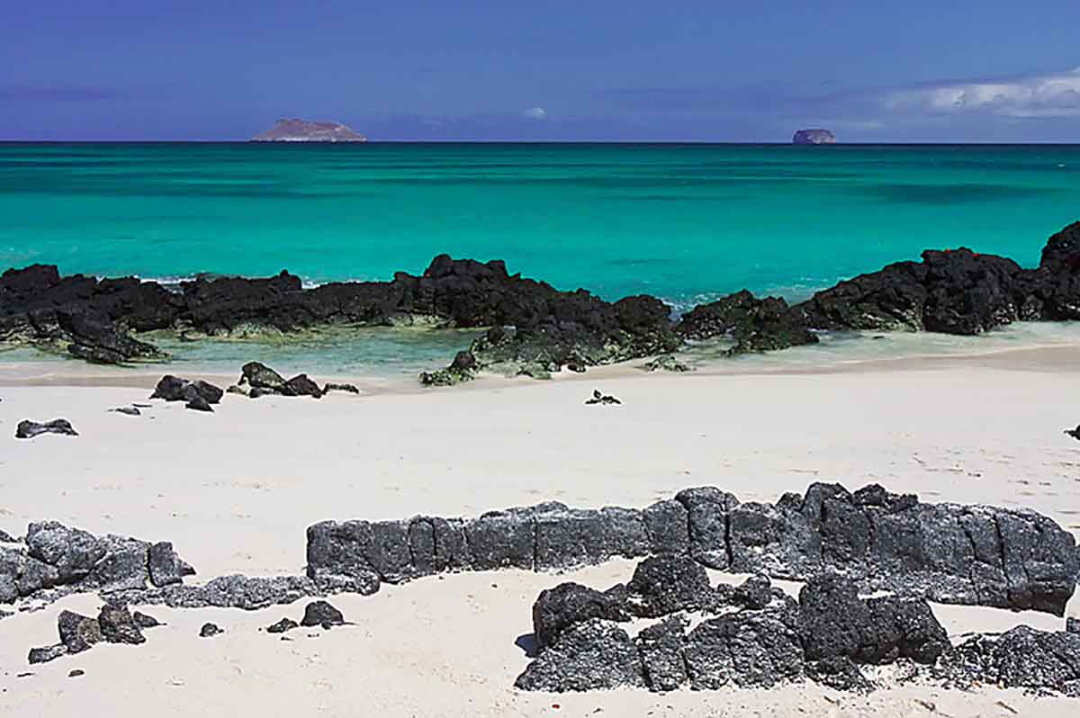 Galapagos Islands 6 Day Liveaboard Tour West Islands Alya Catamaran