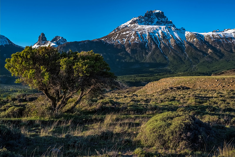 Castillo Mountain trekking tour | Patagonia tours