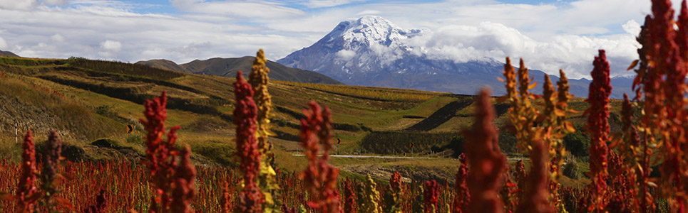 Top Rated Tourist Attractions Of Ecuador