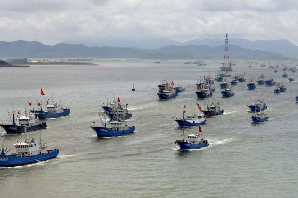 Environmentalists: The Illegal Chinese Fishing Fleet Returns To Destroy Galapagos Marine Reserve