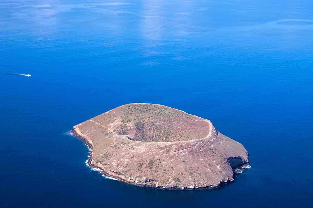 Daphne Major I Galapagos  | Galapagos Islands