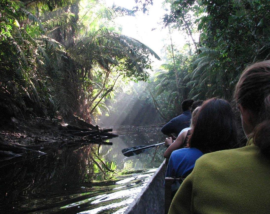Deep Rainfores Experience | Ecuador