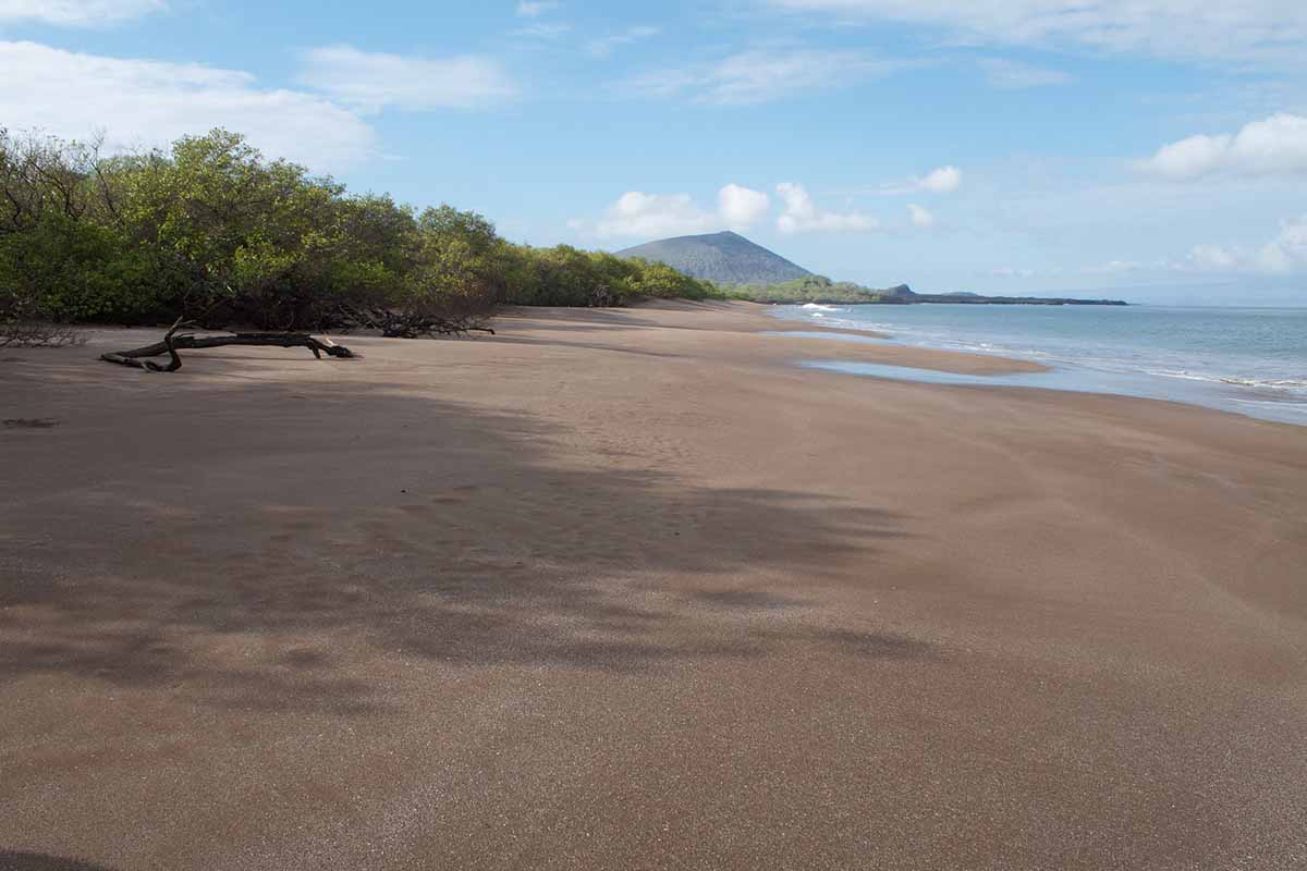 Espumilla beach | San Salvador Island | Galapagos Islands