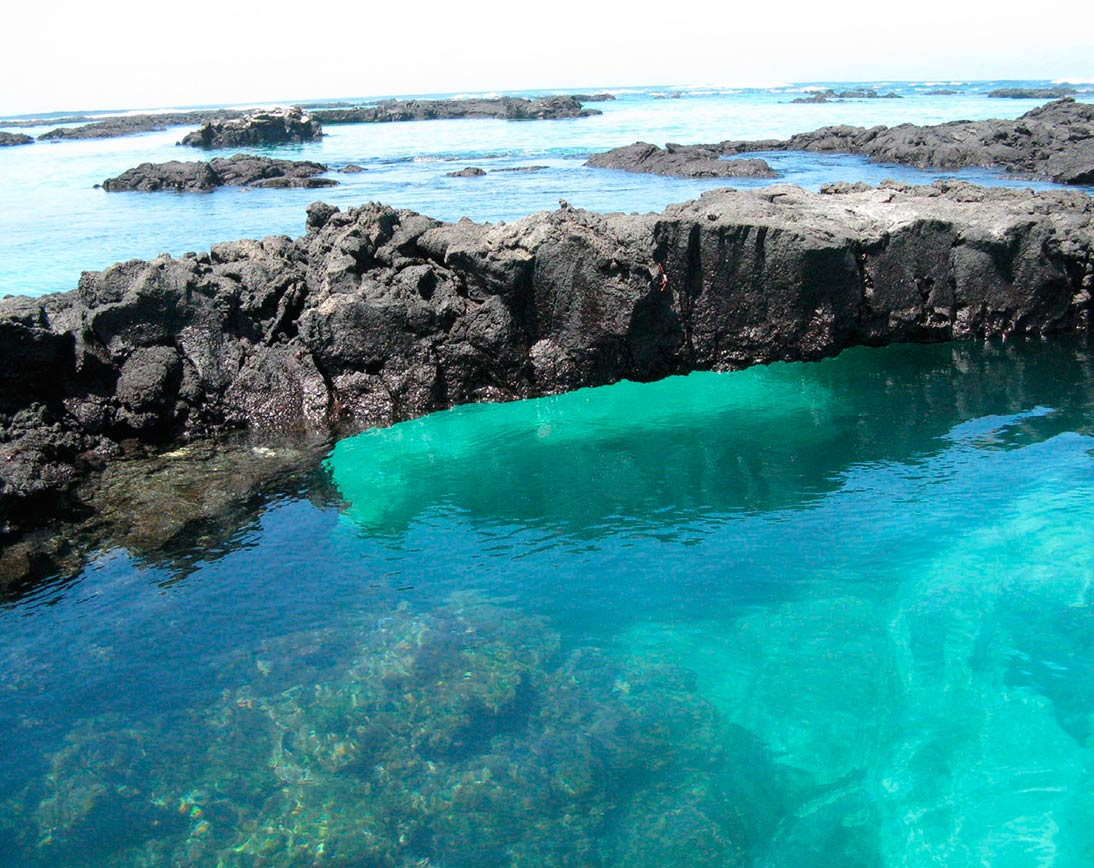Galapagos Snorkeling & Hiking tour package | Galapagos Islands