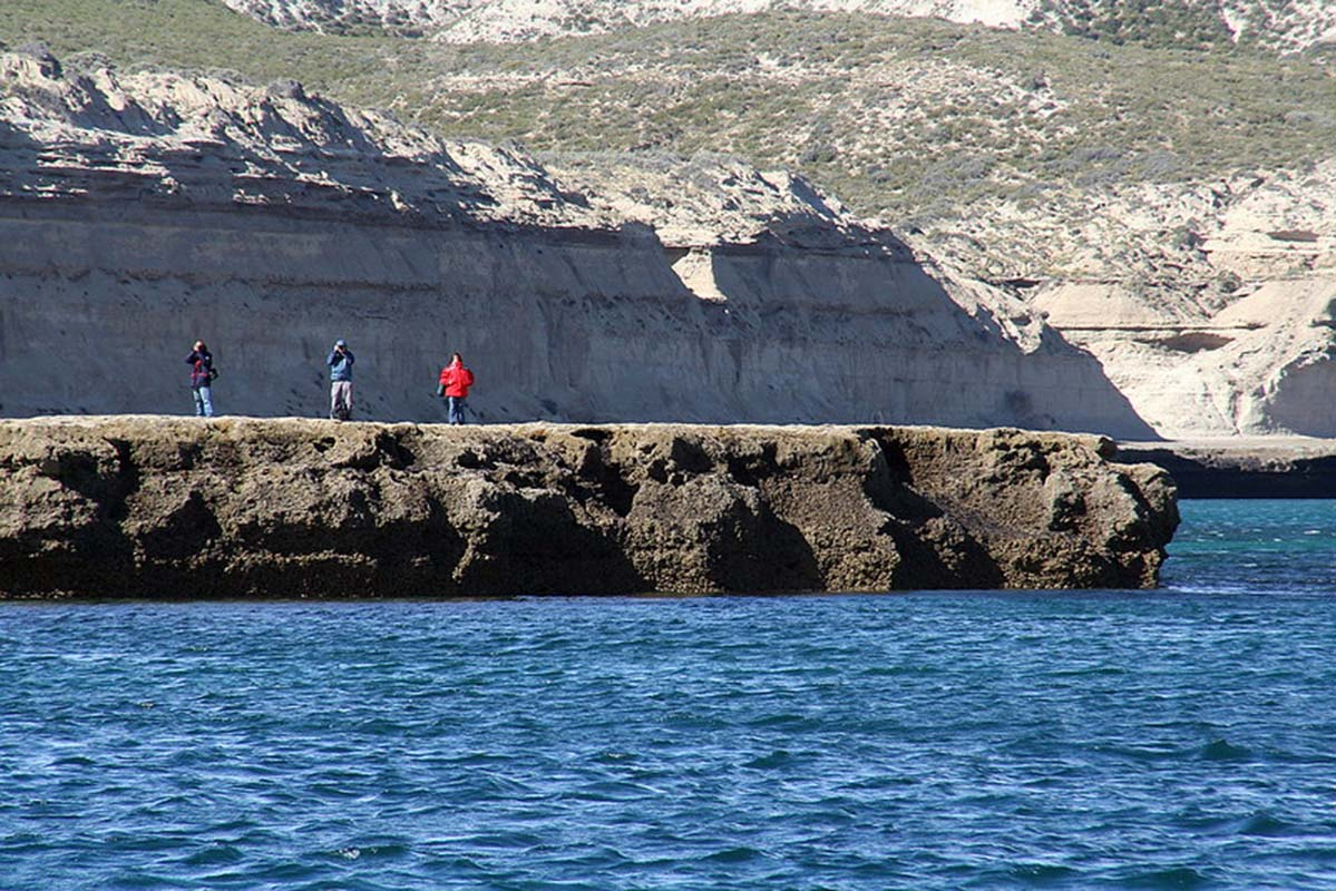 Patagonia whale tour