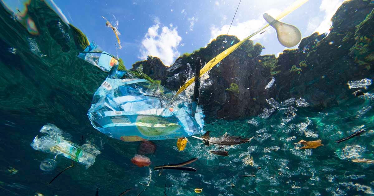 The environment could be irreversibly damaged by global plastic emissions