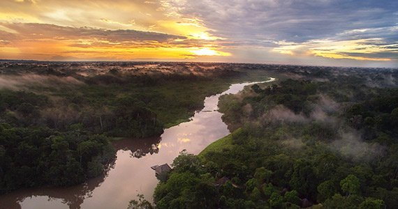 Amazon Rain Forest | Ecuador