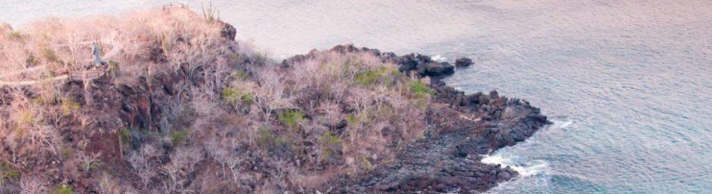 Frigatebird hill