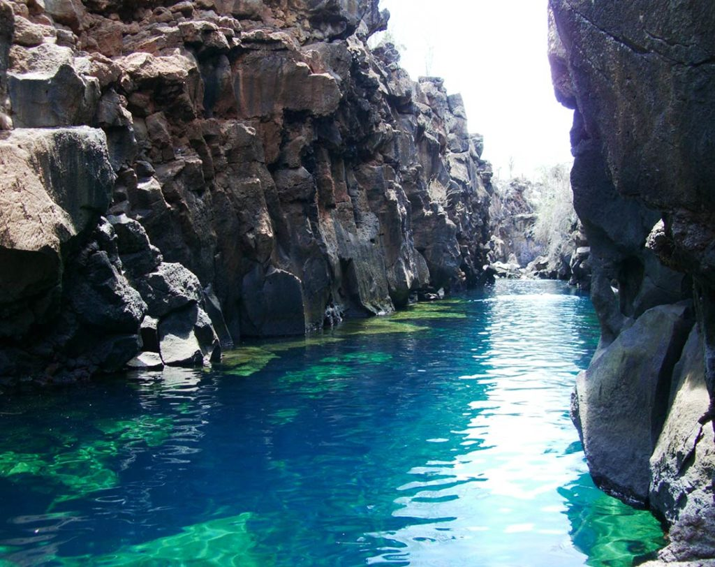 grietas-galapagos-islands-1024x812.MEsS0vo0mzn5h0Ueygci.jpg