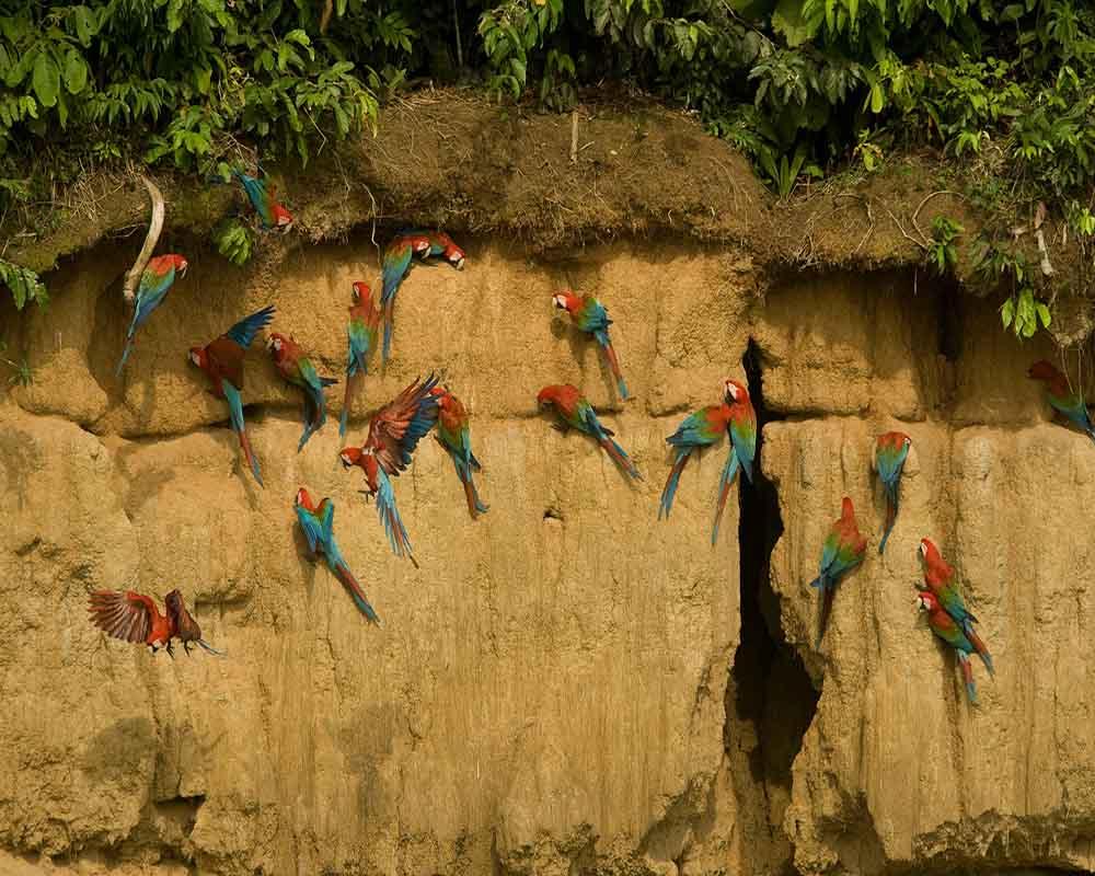 The Jewels of Peru Tour