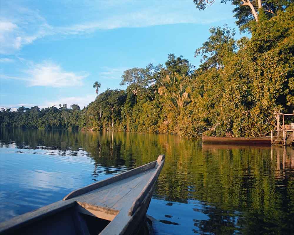 Machu Picchu and Amazon Rainforest