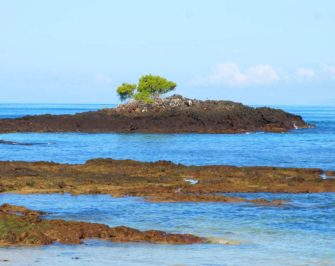 Santa Cruz Island I Galapagos  | Galapagos Islands