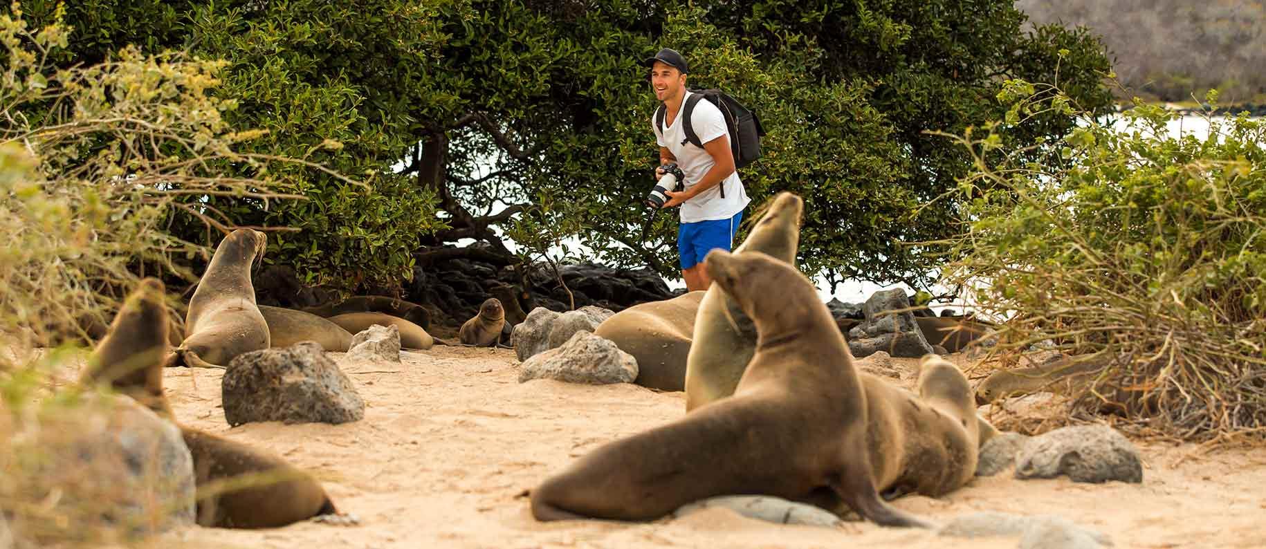 Galapagos Islands | Galapagos Tours | Galapagos Cruises