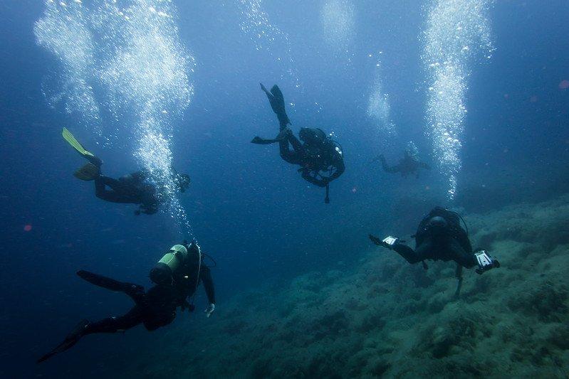 Go Scuba Diving   Peru
