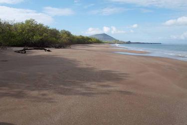 Espumilla beach | San Salvador Island