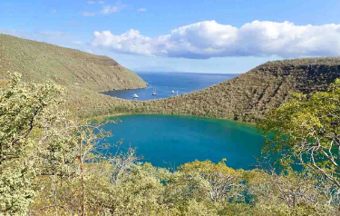 Tagus Cove I Galapagos