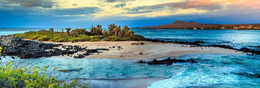 The Ultimate Galapagos Travel Guide for 2021