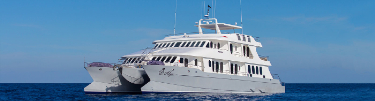 Galapagos Luxury Cruises and Yacht Charters