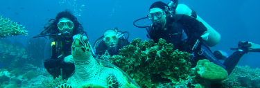 Eight Tips for Diving in the Galapagos Islands