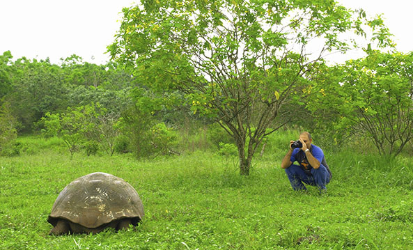 Vegetation Zones | Galapagos islands | South America Travel