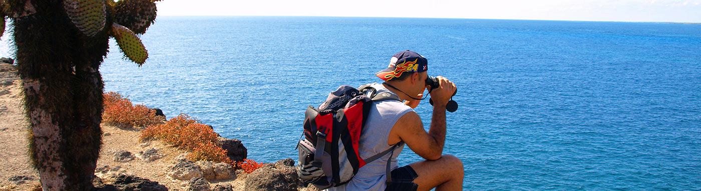 Wildlife Activity Calendar | Galapagos islands | Galapagos cruises