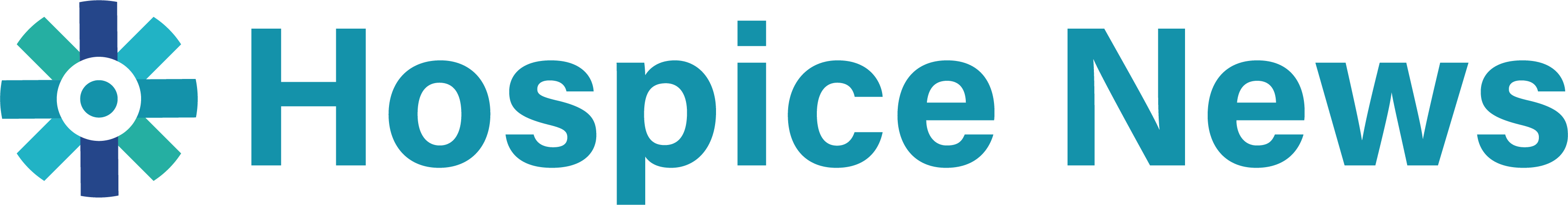 Hospice News Logo