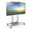 Flat Screen/Interactive Whiteboard Carts, Mounts & Accessories