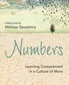 Numbers: Learning Contentment in a Culture of More